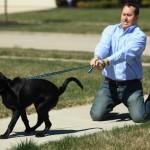 Τα συχνότερα λάθη των ιδιοκτητών σκύλων!