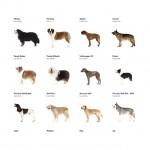 Φυλές σκύλων