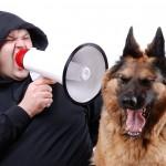 Έχει θέση η ένταση της φωνής στην εκπαίδευση σκύλων?