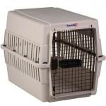 Τα πρώτα βήματα της εκπαίδευσης στο κλουβί, (crate)