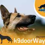 K9doorways, εκπαίδευση σκύλων Θεσσαλονίκη!