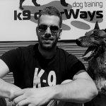 Συμβουλές σκύλων σε ανθρώπους | 6 μαθήματα ζωής απ' τα σκυλιά!