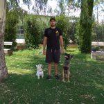 K9doorways, εκπαίδευση σκύλων Αθήνα!